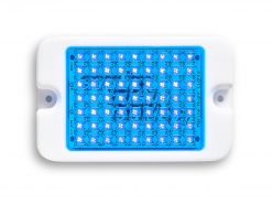 Marine Night Lights Mini Blue LEDs